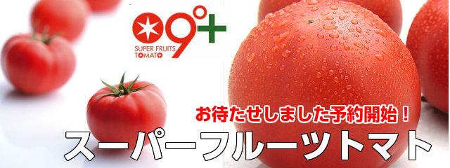季節限定 スーパーフルーツトマト